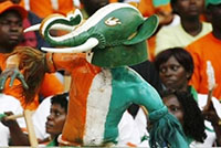 Ivory Coast football supporters