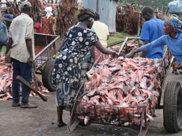 Homa Bay fish-waste processing industry, © Dick Foeken (ASC Leiden)